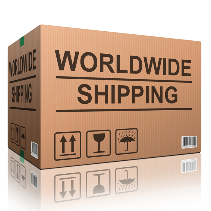 worldwide shipping web shop icon concept for shipping online sho